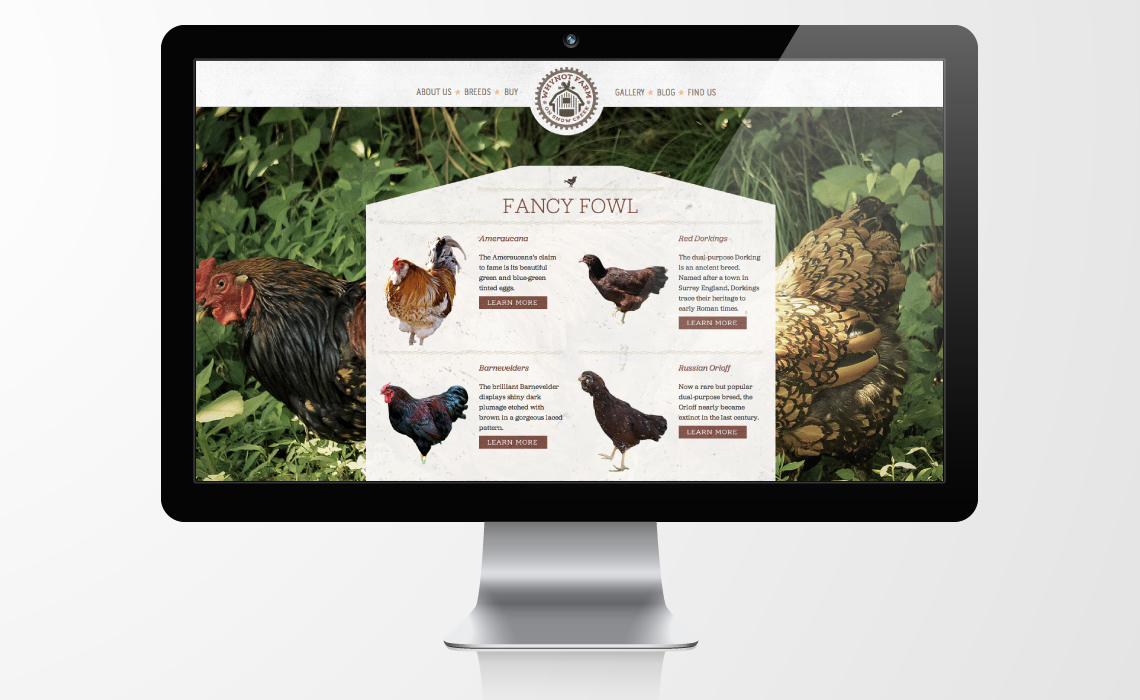 Why Not Farm Organic Meat CMS Web Design