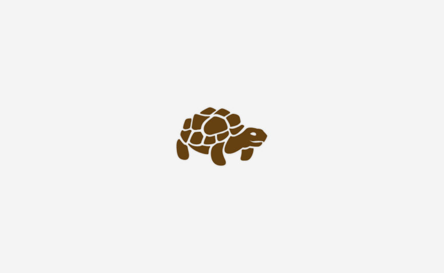 Tortoise icon design by Typework Studio Logo Design Agency