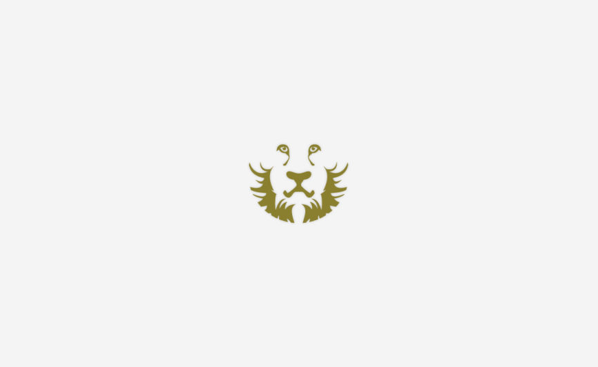 Lion icon design by Typework Studio Logo Design Agency
